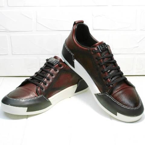 Кожаные кроссовки на осень. Низкие кеды сникеры мужские LucianoBellini-Bordo.