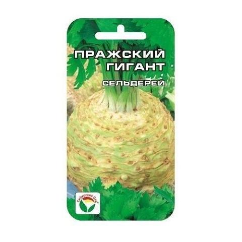 Сельдерей Пражский гигант корневой 0.5гр (Сиб сад)