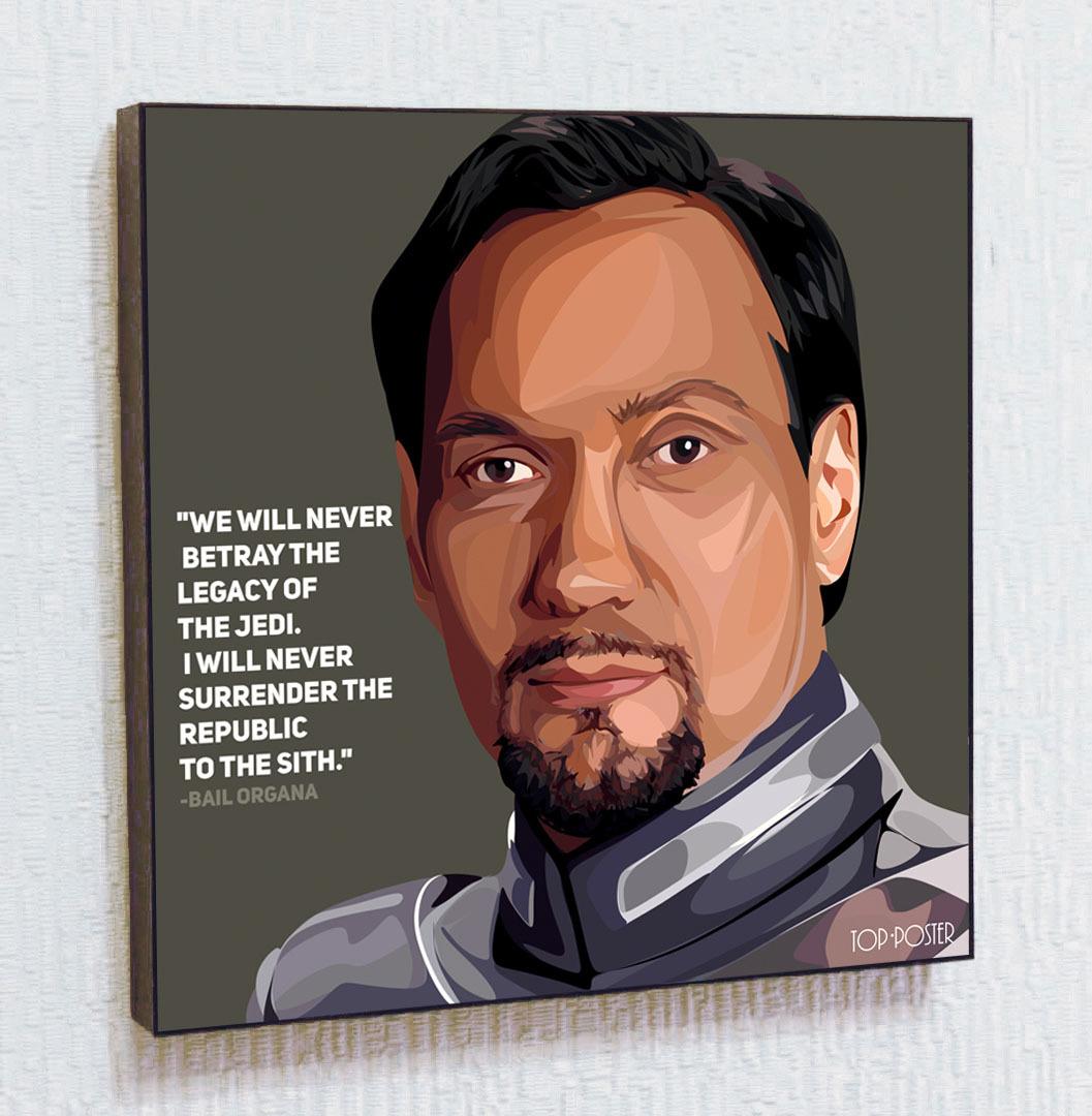 Купить картину постер ПОП-АРТ Бэйл Органа | STAR WARS | Звездные Войны