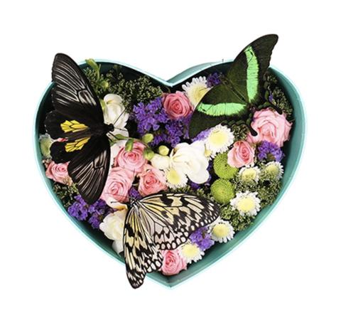 Цветы в шляпной коробке #3999
