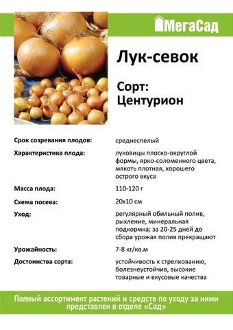 Лук севок сорт Центурион 450гр