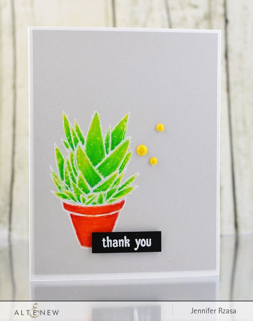 Набор штампов Succulents Stamp Set