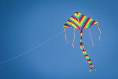 Воздушный змей 2*4м