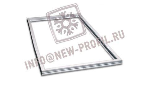 Уплотнитель 30,5*55 см для холодильника Норд 225 (морозильная камера) Профиль 015/013