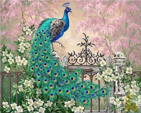 Картина раскраска по номерам 40x50 Павлин на заборе (арт. PH9315)