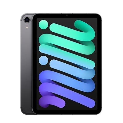 iPad mini 2021, Wi‑Fi + Cellular, 256 ГБ, «Серый космос»