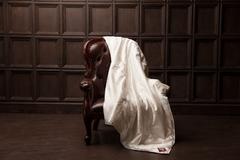 Одеяло шелковое стеганое 200x220 «Fly Silk Grass»