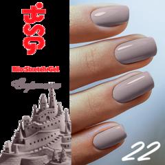 BSG №22 Стремление
