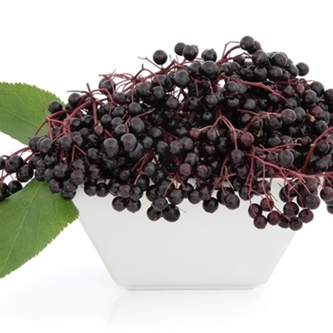 Ароматизатор TPA  Elderberry