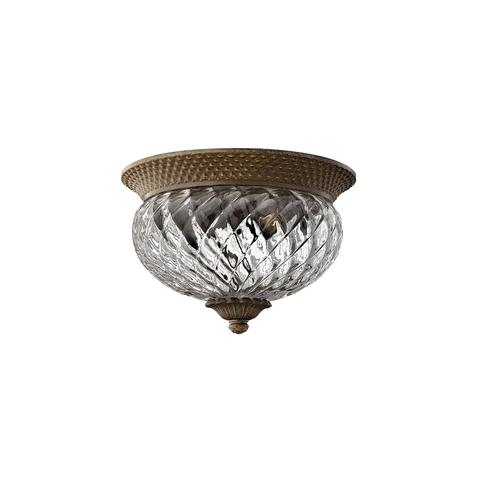 Потолочный светильник Hinkely Lighting, Арт. HK/PLANT/F/S PZ