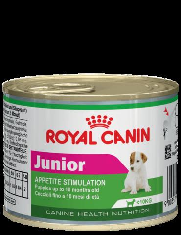 Для щенков мелких пород (вес взрослой собаки до 10 кг) в возрасте 10 месяцев