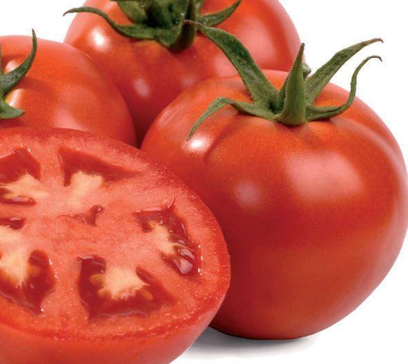 Nunhems Платинум F1 семена томата процессингового (Nunhems / Нюнемс) ПЛАТИНУМ_F1_семена_овощей_оптом.jpg