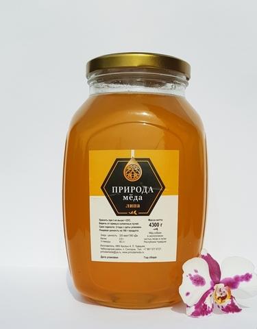 Мед липовый 3 литра