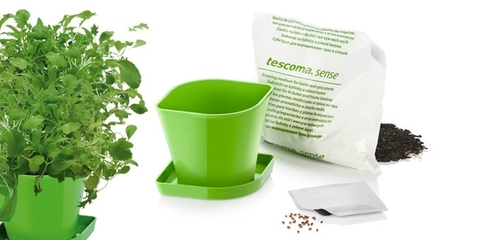 Набор для выращивания пряных растений Tescoma SENSE, азиатская смесь