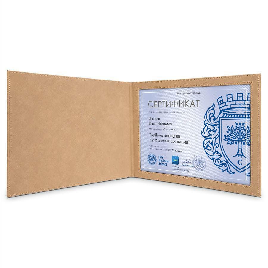 Папка-обложка «Перфект» для квалификационных документов (бежевая)