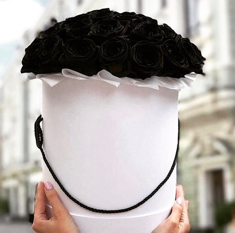 25 чёрных роз в шляпной коробке #26894