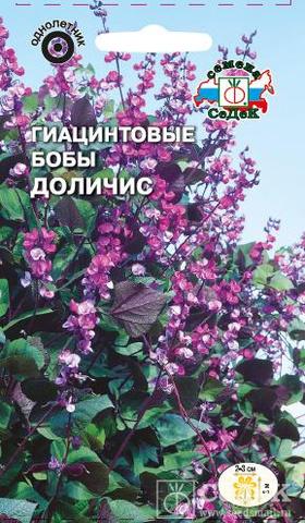 Семена Гиацинтовые Бобы Доличис (Долихос)