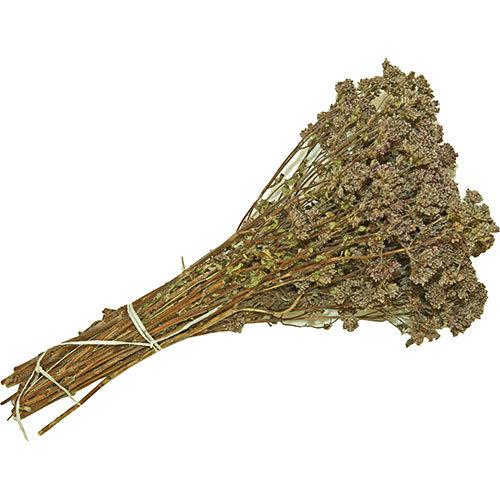 Пучок травяной из душицы
