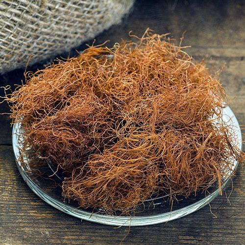 Травы Кукурузные рыльца corn-silk-353.jpg
