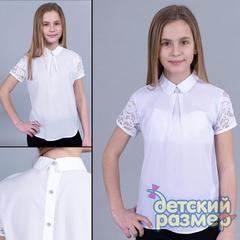 Блузка (шифон, брошь)
