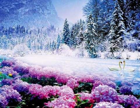 Алмазная Мозаика 40x50 Сказочная зимняя погода (арт. SGA2367)