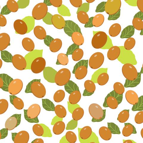 Berry lingonberry