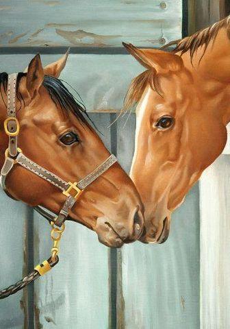 Картина раскраска по номерам 50x65 Две лошади