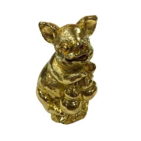 Свинка золотая