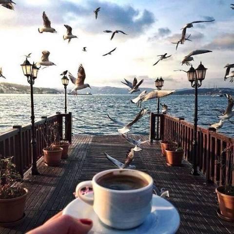 Картина раскраска по номерам 40x50 Чашка кофе на набережной (арт. PH9455)