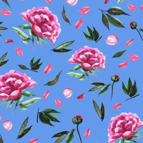 Розовые пионы на голубом фоне