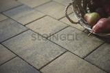 Тротуарная плитка STEINGOT Прямоугольник 200х100х60 (ШТАЙН ХРОМ)