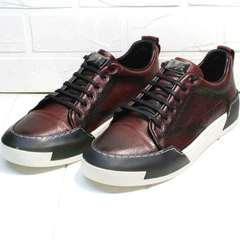 Кожаные сникерсы кроссовки осенние Luciano Bellini C6401 MC Bordo.