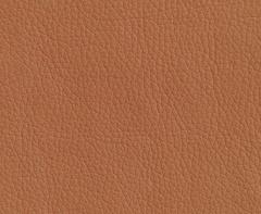 Искусственная кожа Oregon (Орегон) 06