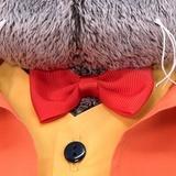 Кот Басик в оранжевом пиджаке