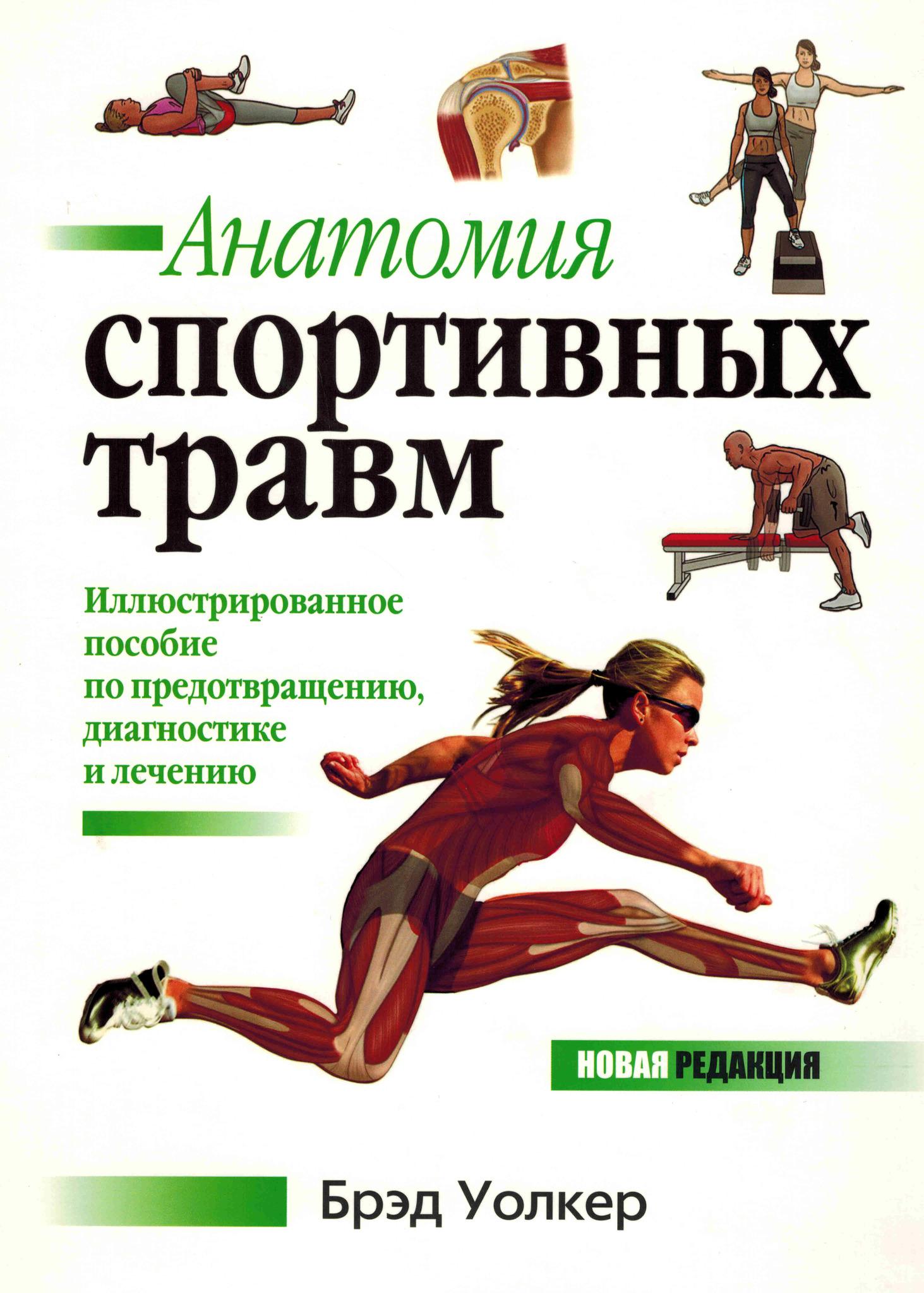 Новинки по травме Анатомия спортивных травм anatom_sport_travm.jpg