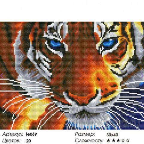 Aлмазная мозаика Голубоглазый тигр