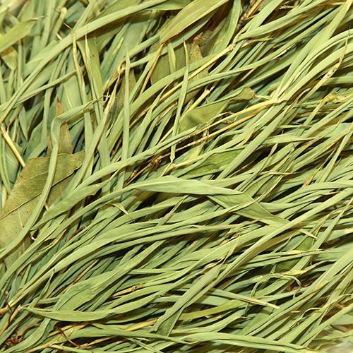 Веник бамбуковый с эвкалиптом