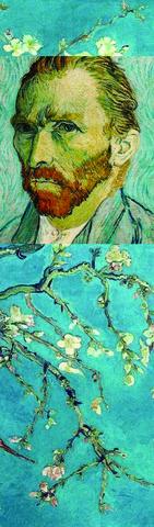 Əlfəcin Van Gogh 8