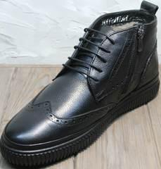 Зимние ботинки на шнуровке мужские Rifellini Rovigo C8208 Black