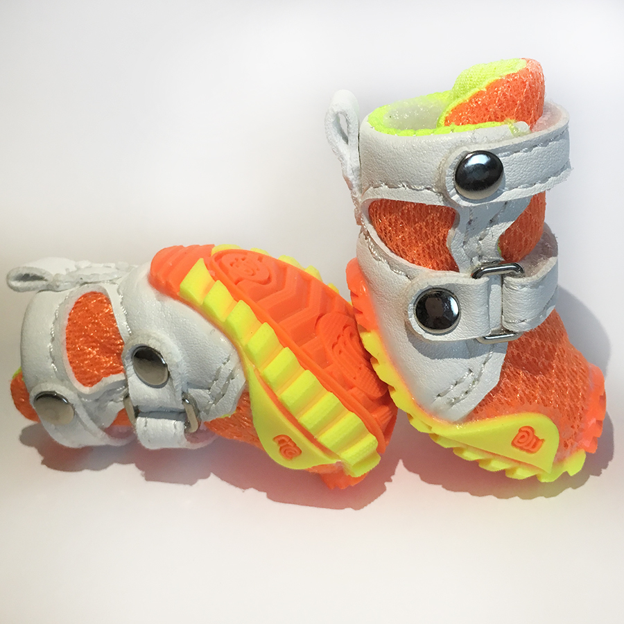 кроссовки для чихуахуа