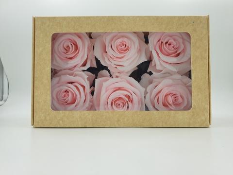 Стабилизированный Бутон Розы Optimum Flowers Standart . Цвет Нежно розовые(Диаметр 7см)