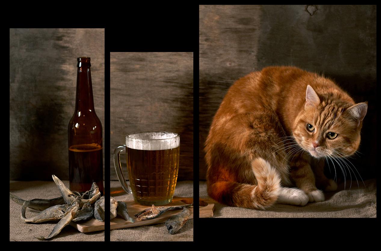 """Животные Модульная картина """"Рыжий кот"""" М982.png"""