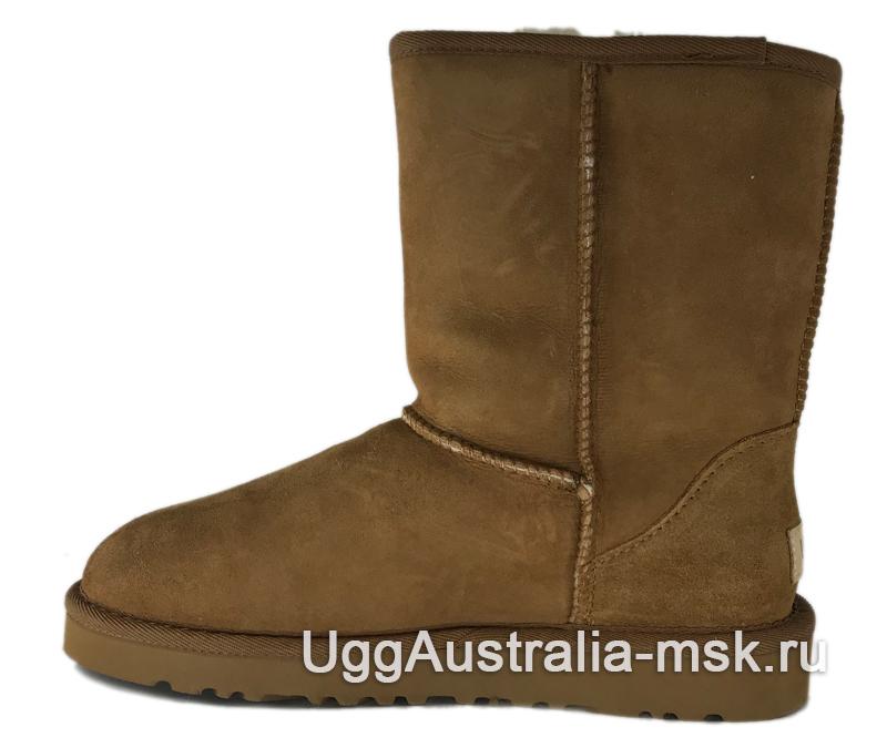 UGG Classic II Short Chestnut