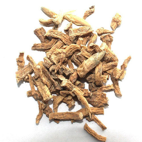 Травы Купена лекарственная, корень polygonatum-root-364.jpg