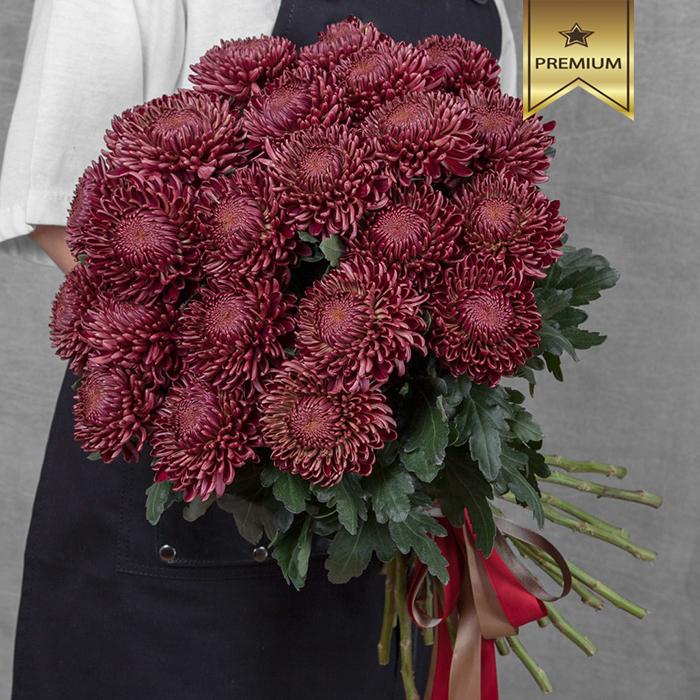 Купить шикарный вип букет 35 красных крупных хризантем Бигуди Ред в Перми