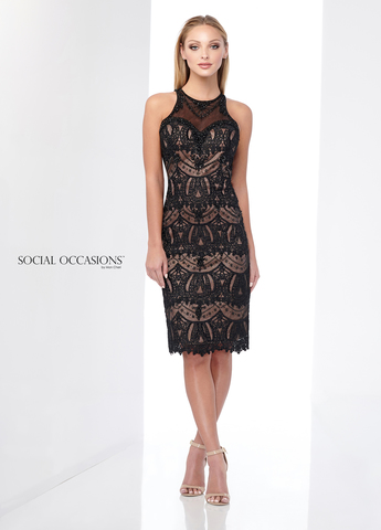 Social Occasions 218808