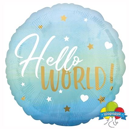 Шар круг Hello world выписка мальчик