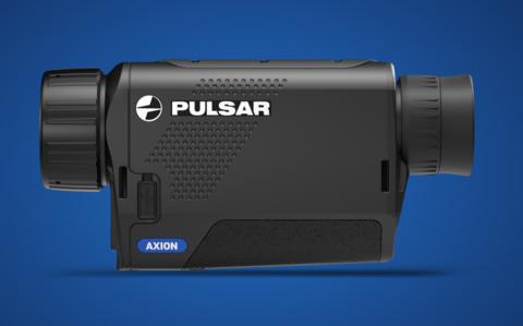 Pulsar Axion