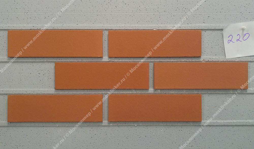 Feldhaus Klinker - R220NF9, Classic Terracotta Liso, 240x9x71 - Клинкерная плитка для фасада и внутренней отделки