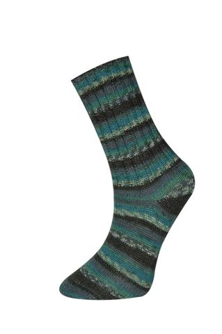 Купить Пряжа Himalaya Socks Bamboo Код цвета 120-04 | Интернет-магазин пряжи «Пряха»